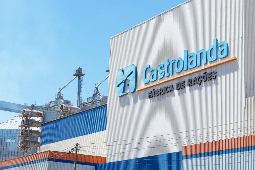 Organização e Estratégia: Castrolanda expande produção de ração animal