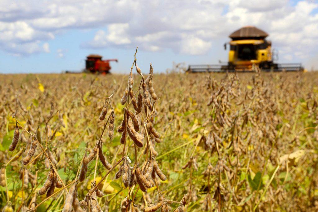 Safra de soja 2019/20 na Castrolanda tem aumento na produtividade e comercialização recorde