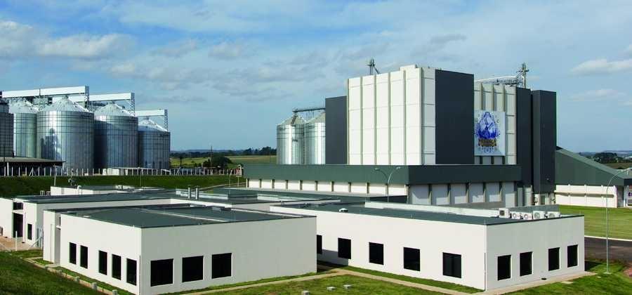 Herança Holandesa expande produção de farinha em PG