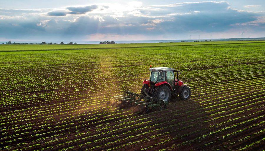 Cooperativas agro se destacam em ranking da Forbes