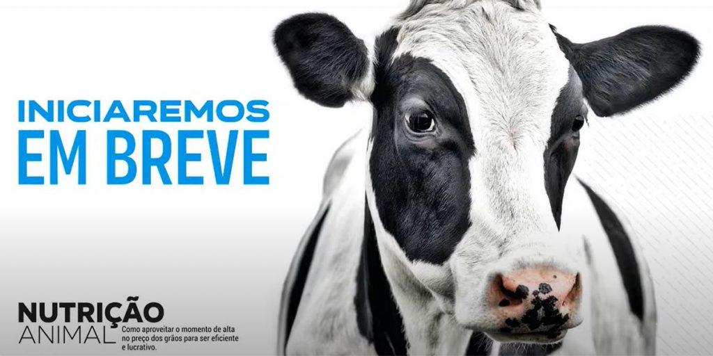Castrolanda promove Webinar Nutrição Animal