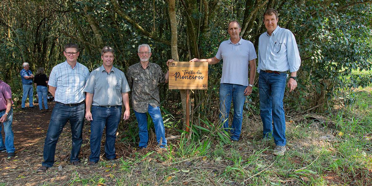 Cooperativa e Comunidade Castrolanda realizam ação com plantio de Araucárias